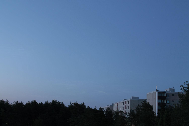 MG_7462.jpg